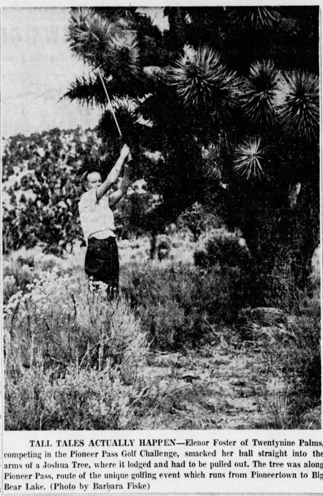 Oct. 12, 1960 - The San Bernardino County Sun article clipping