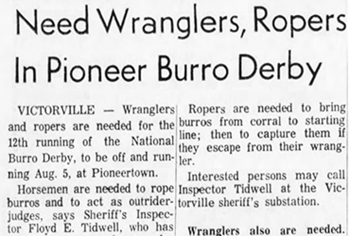 Pioneer Burro Derby featured image