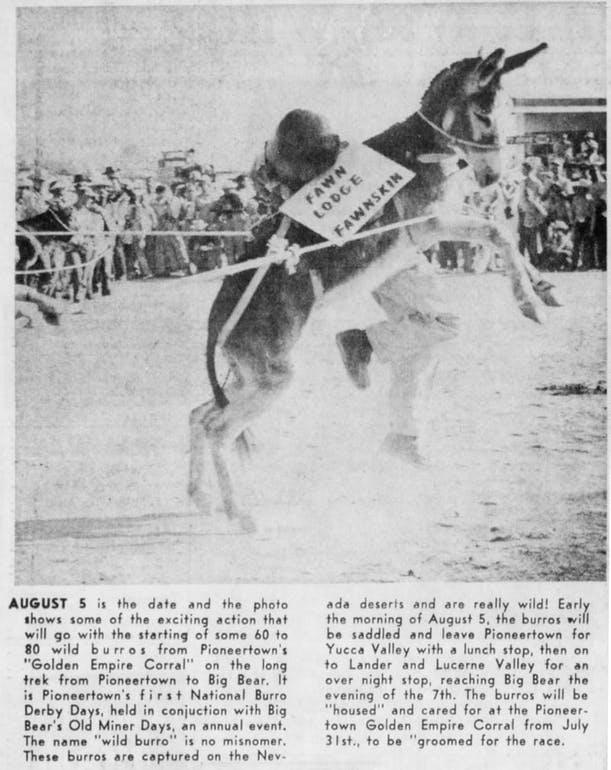 July 24, 1965 - The Desert Sun article clipping