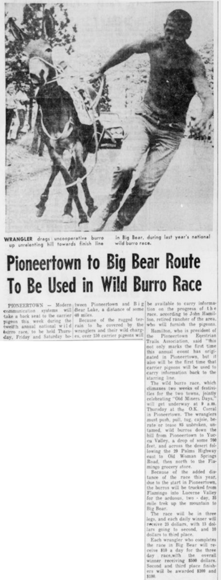 Aug. 2, 1965 - The Desert Sun article clipping